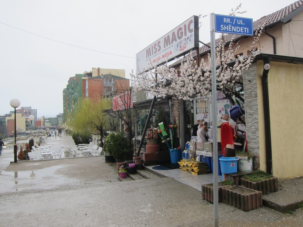 Pristinaa
